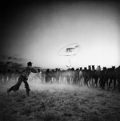 Adam Jahiel: Roping a Cloud, 1994