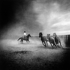 Adam Jahiel: Three Horses of the Apocalypse, 1999