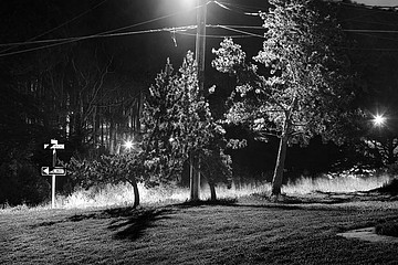 Charity Vargas: Three Trees, Rodriquez Street, 2007