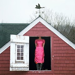 Cig Harvey: The Weathervane, 2010
