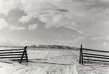 Claudio Cambon: Cattle Guard, Winter Morning, 1999