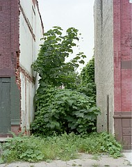 Daniel Traub: Lot, North Nineteenth Street near West Cumberland Street, North Philadelphi