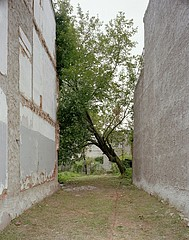 Daniel Traub:   Lot, West Girard Avenue near Lancaster Avenue, West Philadelphia, 2010