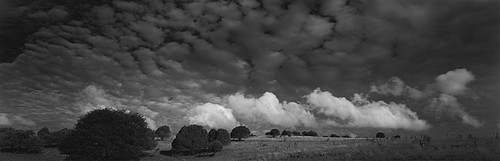 David H. Gibson: Cloud March, Fort Davis, Texas, 1988