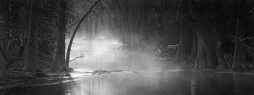 David H. Gibson: Quiet Morning Mist, November 24, 1997, Cypress Creek, Wimberley, Texas