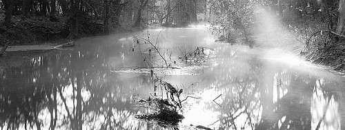 David H. Gibson: Beyond Three Trees, Cypress Creek,  Wimberley, Texas, 1997
