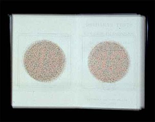 Doug Keyes: Ishihara's Tests for Colour-Blindness, 2001
