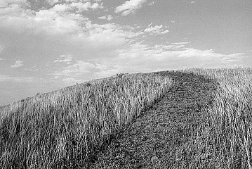 Drex Brooks: Nez Perce Surrender Site, Bear's Paws Mountains, Blaine County, Montana, 1989