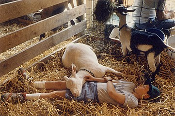 Elaine Mayes: Boy & Goat, Dutches County Fair, 1985
