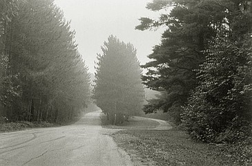 Elaine Mayes: Farms Road I, Florence,  MA, 1977