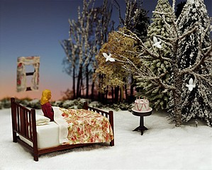 Grace Weston: Winter Wish, Winter Dream, 2006