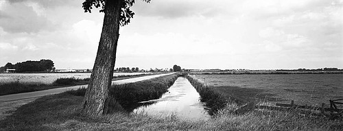 Hans Bol: Over-Betuwe, August 2002