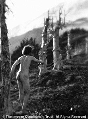 Imogen Cunningham: On Mount Rainier 3, 1915