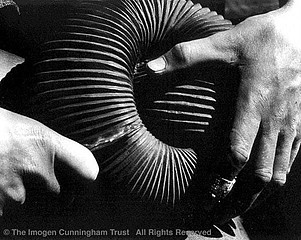 Imogen Cunningham: Hands of Sculptor Robert Howard 3, 1926