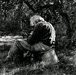 Jon Edwards: Orchard Lunch, 2007