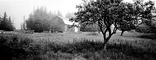 Jon Edwards: Howard Barn and Orchard, 2006
