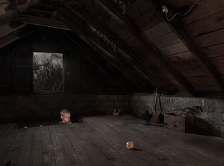 Julie Blackmon: Attic