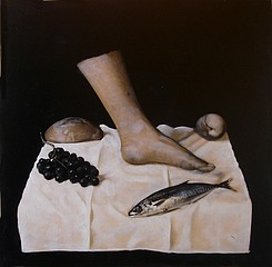 Kate Breakey: Still Life after Joel-Peter Witkin