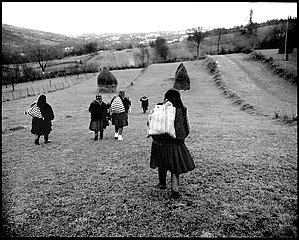 Kathleen Laraia McLaughlin: Home from Market, Fields of Sarbi, Romania, 2000