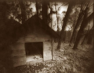 Kay Denton: Dog Shack, 2001