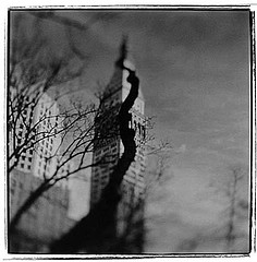Keith Carter: Squirrel Tree, 1998