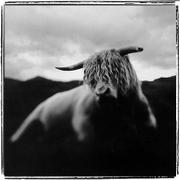 Keith Carter: Selection of Published Work 3