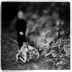 Keith Carter: BROKEN LEG, 1998