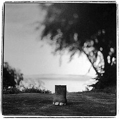 Keith Carter: Elephant Foot, 1998