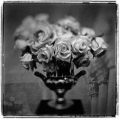 Keith Carter: Roses, 1998