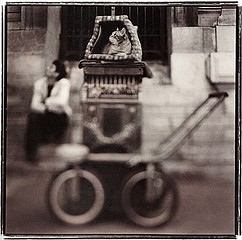 Keith Carter: Organ Grinder, 1999
