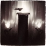 Keith Carter: Selection of Published Work  5