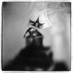 Keith Carter: Ink Bottle Rose II, 1999