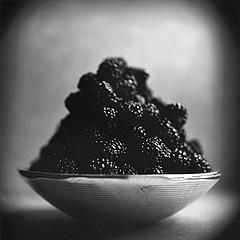 Keith Carter: Blackberries, 2001