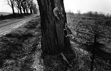 Larry Towell: Naomi in the tree with her cat, 1990