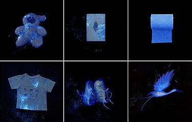 Laurie Tümer: Glowing Evidence: Studies in White, 2005