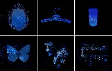 Laurie Tümer: Glowing Evidence: Studies in Blue, 2005