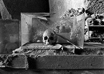 Margaret Stratton: Skull in Glass Case, Santa Maria, Catacomb De La Fontenella, Naples, Italy, 2001