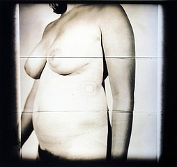 Mark Eshbaugh: Nude #29, 2004