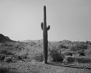 Mark Klett: Emily Facing East, Gila Bend Mountains, 1997
