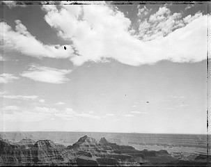 Mark Klett: Fly, North Rim Grand Canyon 7/3/04