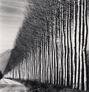 Michael Kenna: <em>A Retrospective</em>, Volume III: 2008 – 2016