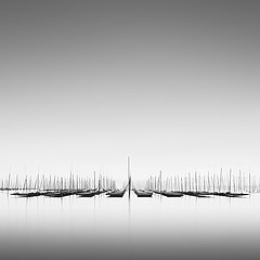 Michael Levin: Quiet Sea, 2011