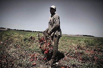 Michele Palazzi & Alessandro Penso: Seasonal Worker During the Tomato Harvest, Basilicata, Italy