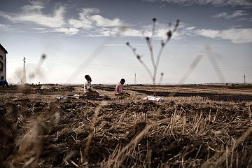 Michele Palazzi & Alessandro Penso: Migrants Praying in the Field, Basilicata, Italy