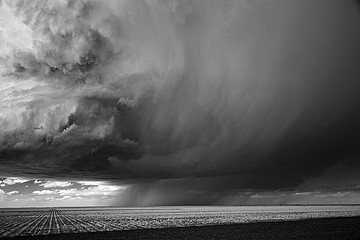 Mitch Dobrowner: Corn-Rain