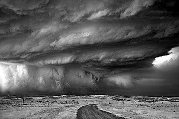 Mitch Dobrowner: Bear's Claw