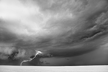 Mitch Dobrowner: Amoeba