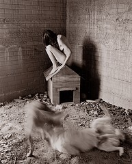 Patti Levey: Doghouse, 1999