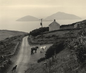 Photo Objects & Small Prints: Pentti Sammallahti, Coumeenoole, Ireland, 1978