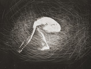 Robert Stivers: Nest, 1989